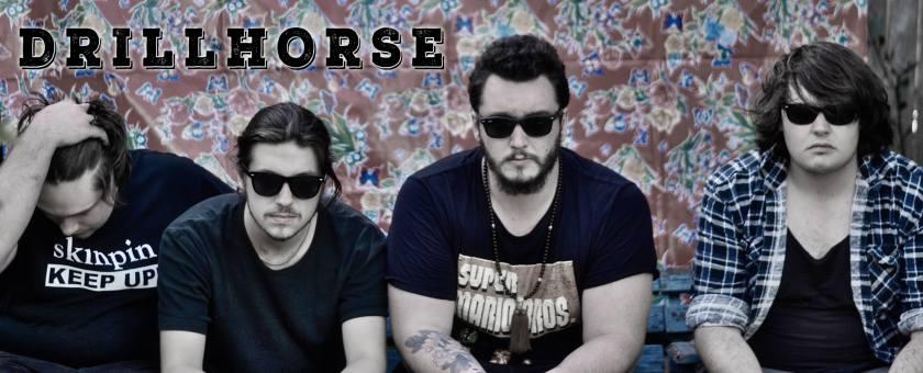Drillhorse Photo