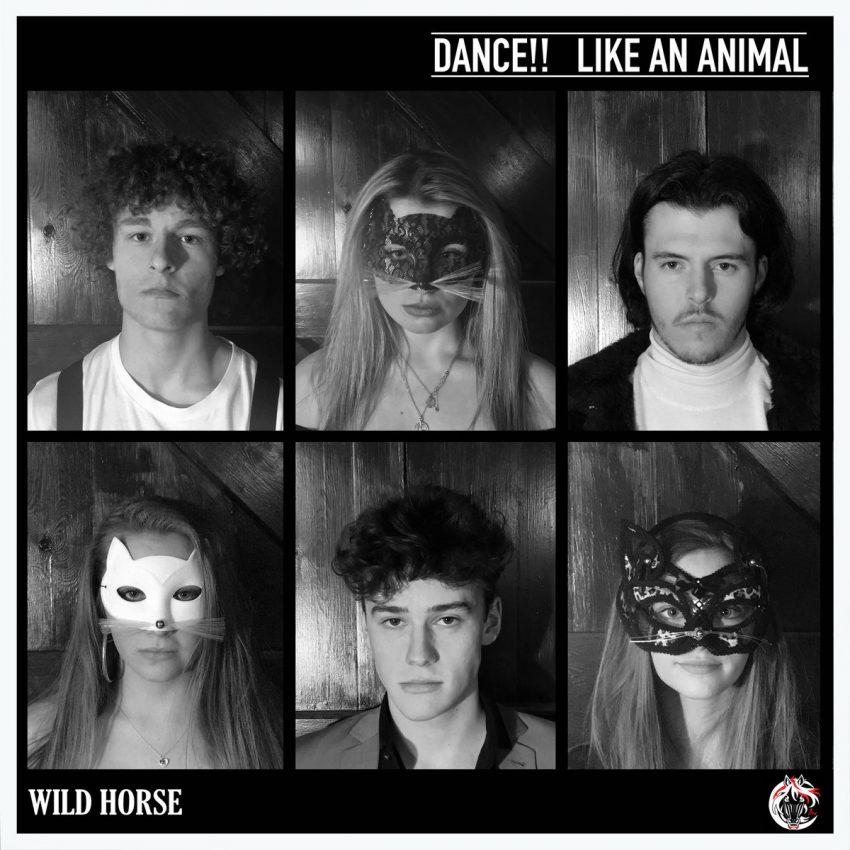 Wild Horse album art
