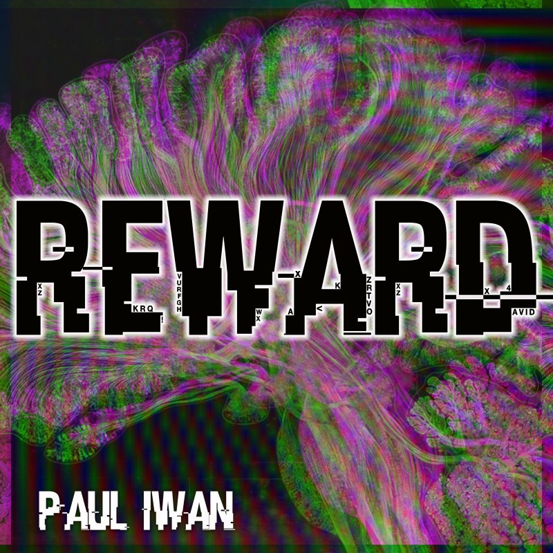 Paul Iwan Reward